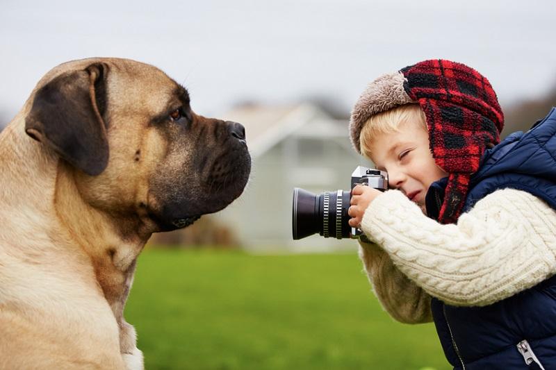 Kind versucht, seinen Hund zu fotografieren